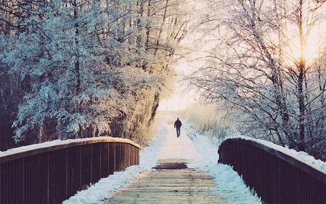 freddo ghiaccio uomo sentiero ponte