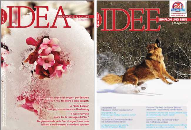 idea feb 19 mix