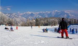 snowboard domobianca 19