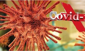 virus covid 19 arancione